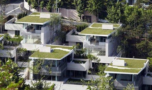 مازندران سرسبز است اما خانه سبز ندارد