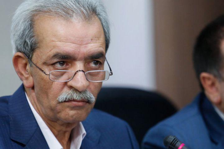 شافعی عنوان نمود؛ ایران تاثیرگذارترین کشور در اقتصاد منطقه است