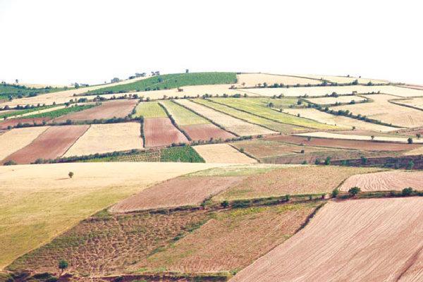 سیاست های 13گانه بخش کشاورزی استان سمنان تدوین شده است