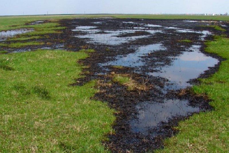 نفوذ میکروپلاستیک ها به منابع آب زیرزمینی