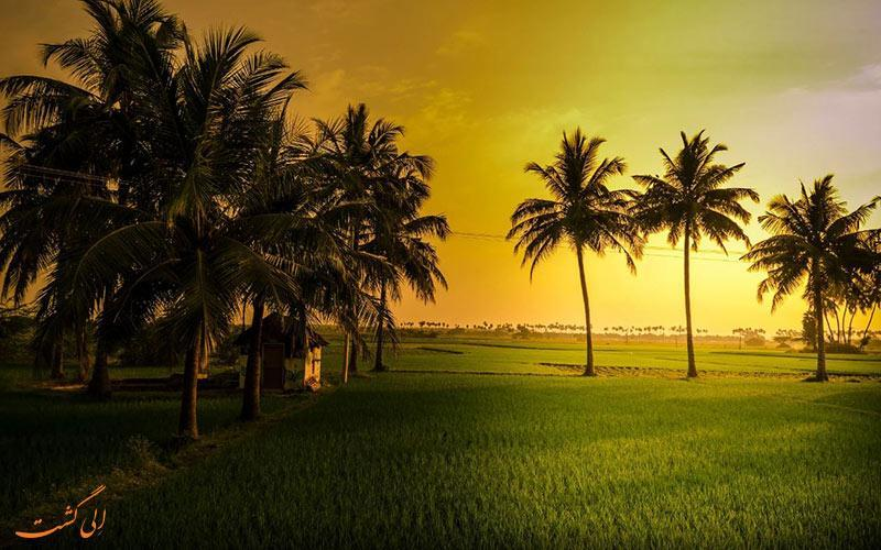 سفری به شهر فرانسوی پوندیچری در هند