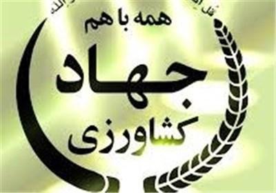 احیای راه ابریشم هدف برگزاری نمایشگاه مشترک ایران و چین است