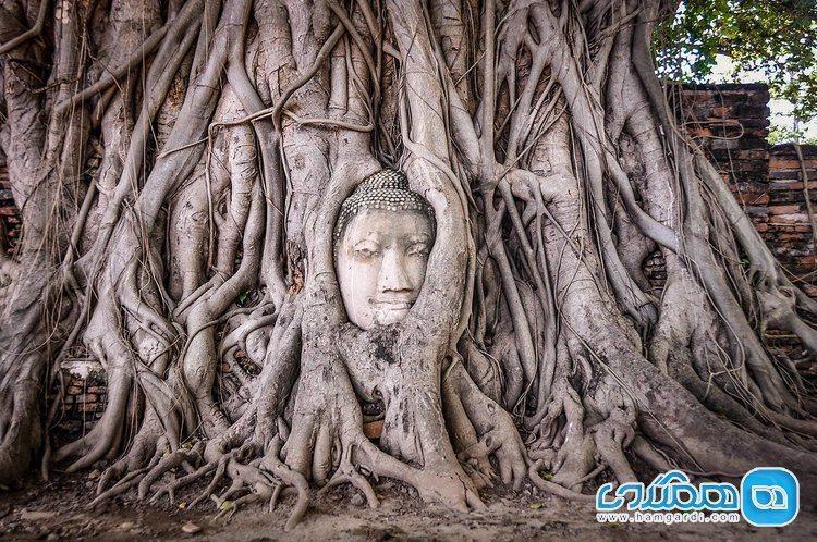 سفر مسئولانه به تایلند؛ کشوری آسیایی با جاذبه هایی بی بدیل