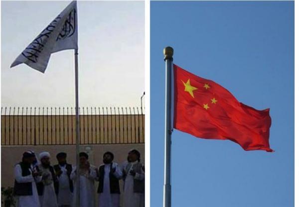فرایند صلح و امنیت شرکت های چینی؛ محور ملاقات سفیر چین با طالبان