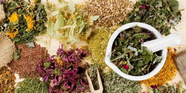 5هزار فرآورده مبتنی بر گیاهان دارویی تجاری سازی شد